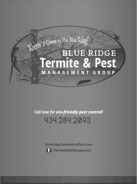 Blue Ridge Termite & Pest